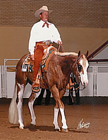 GQ Esquire, APHA Stallion at World show